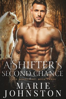 A Shifter's Second Chance - Pale Moonlight